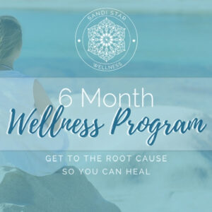 6 Month Wellness Program